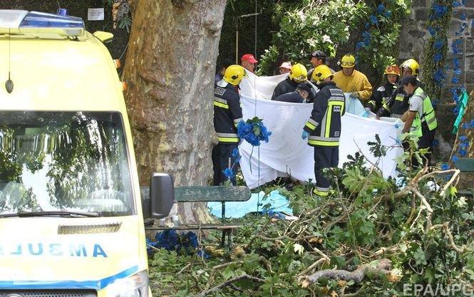 Жертвами дерева-убийцы вовремя праздника наМадейре стали 11 человек