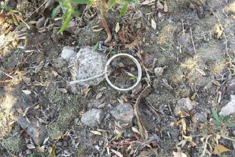 ВДонецкой области мирная жительница подорвалась нарастяжке