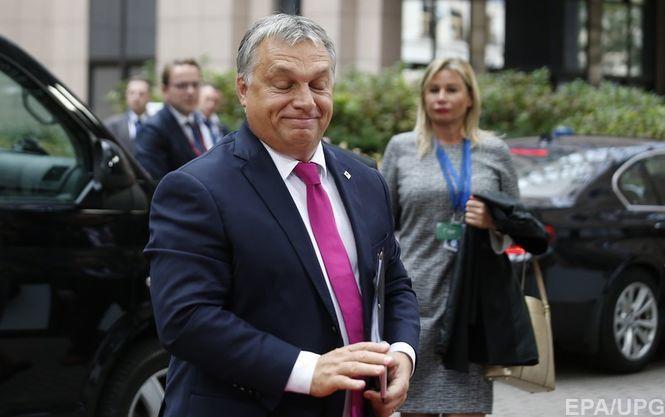 Елисеев: Здравый смысл восторжествует иУкраине удастся отыскать общий язык сВенгрией
